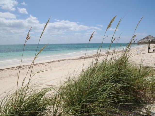 Bahamas Adventures Beach Club