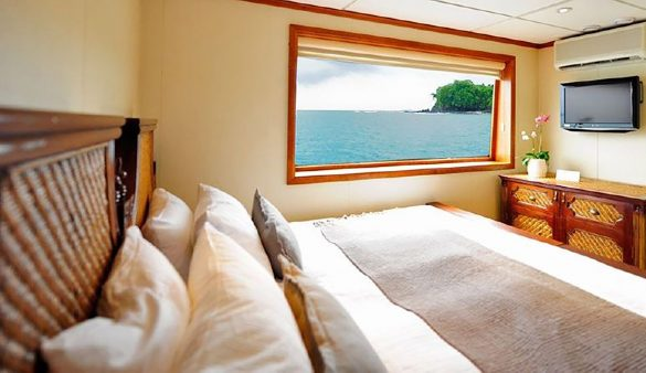 King Bed - Stateroom