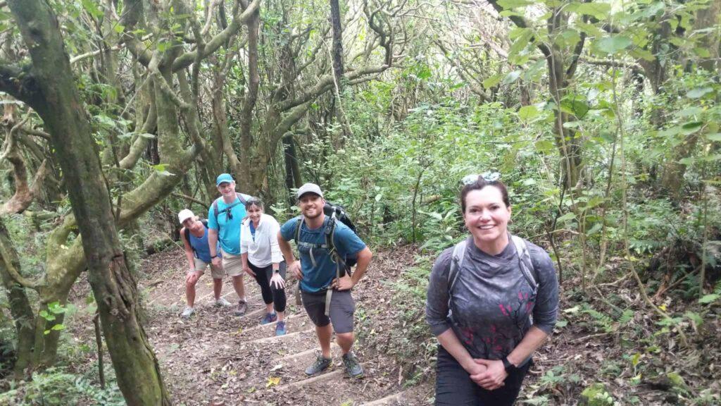 Backroads hiking in New Zealand