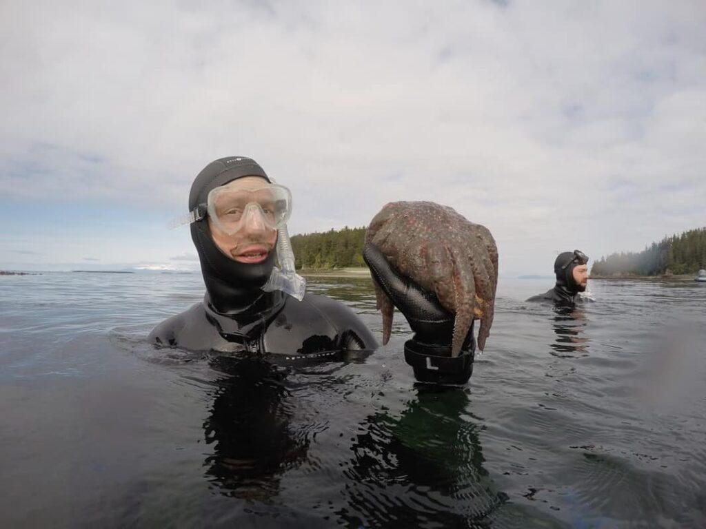 Alaska snorkeling