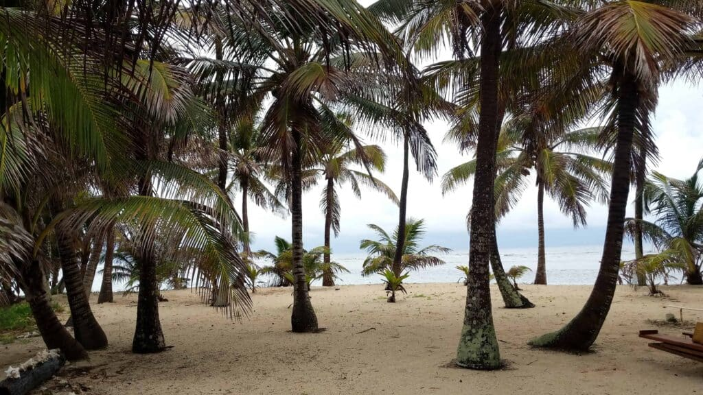 UnCruiseAdventures Develops New Expedition Cruises in Belize and Guatemala | 16