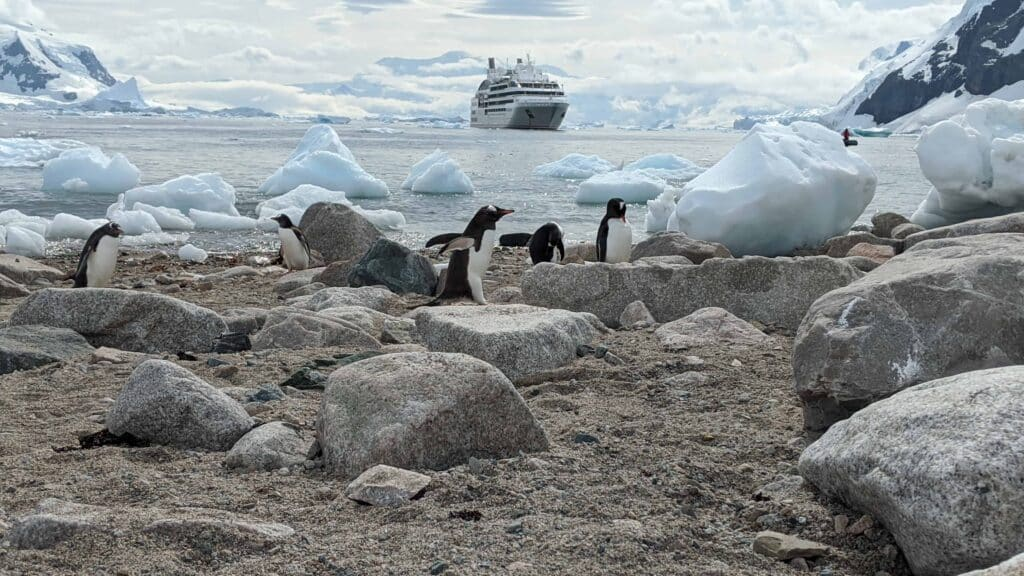 An Antarctica Expedition Cruise with Abercrombie and Kent | 7