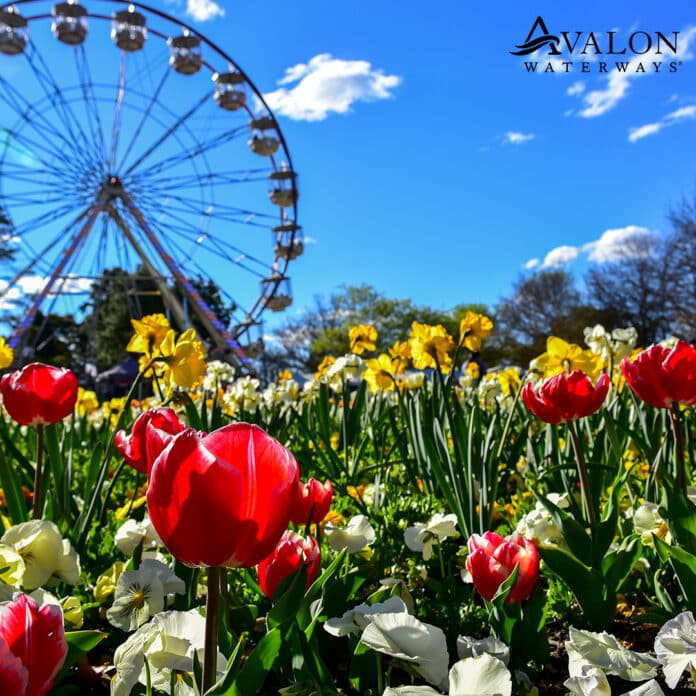 Avalon Floriade